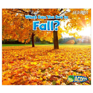 What Can You See In The Fall?