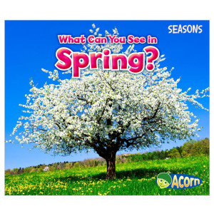 What Can You See In The Spring?