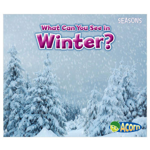 What Can You See In The Winter?