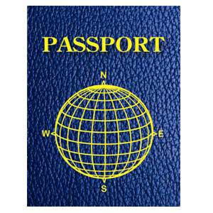 Blank Passports-Pack of 12