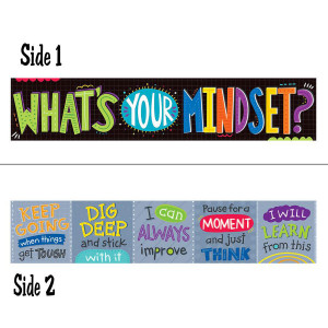 What's Your Mindset 2-Sided Banner