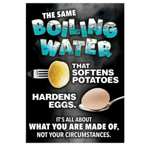 Boiling Water-What You Are Made Of Poster