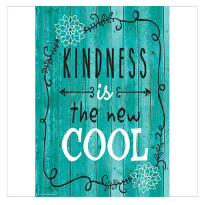 Shabby Chic Kindness New Cool Positive Poster
