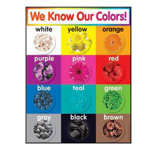 We Know Our Colors! Photo Poster