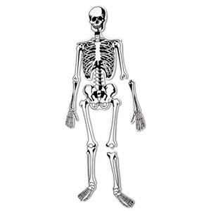 Skeleton Floor Puzzle