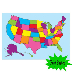 United States Map Poly Small Poster