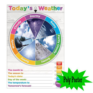 Today's Weather Poly Small Poster