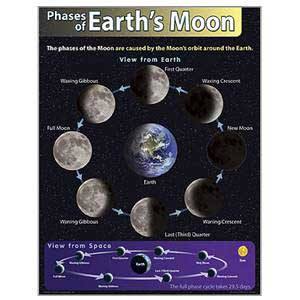 Phases of the Earth's Moon Poster