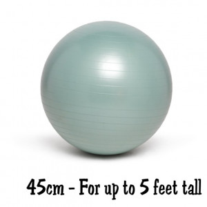 Silver 45cm No-Roll, Weighted Balance Ball
