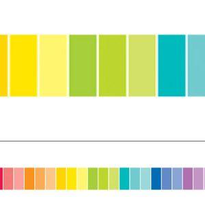 Painted Palette Multi-Color Paint Chip Border