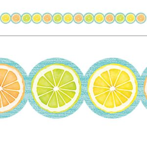 Lemon Zest Citrus Slices Border